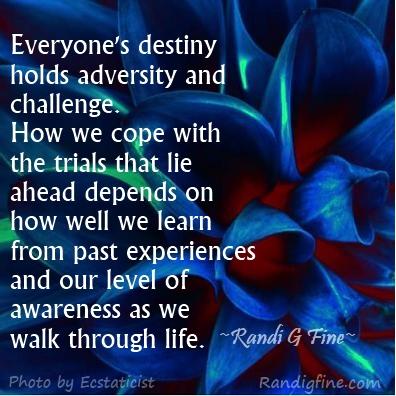 adversity #2