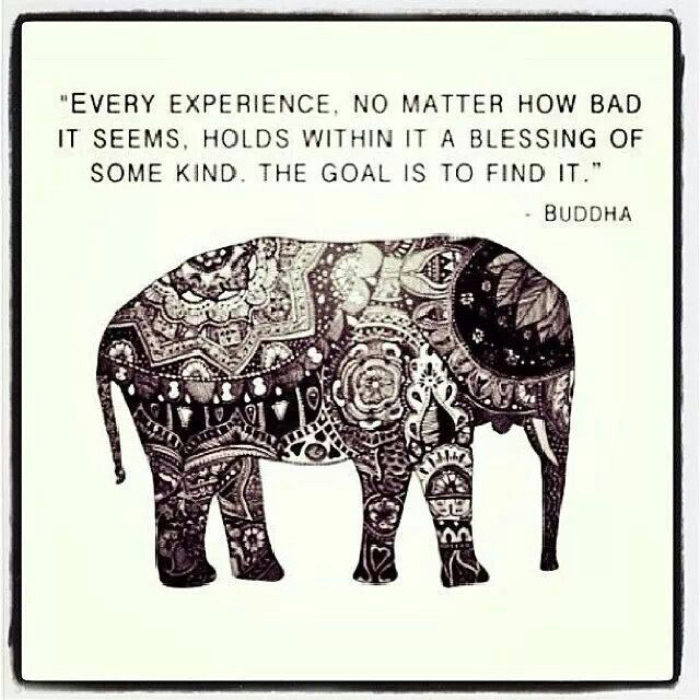 buddha quote with elephant